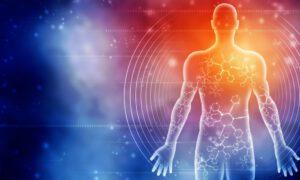 Gesundheit Human Reboot